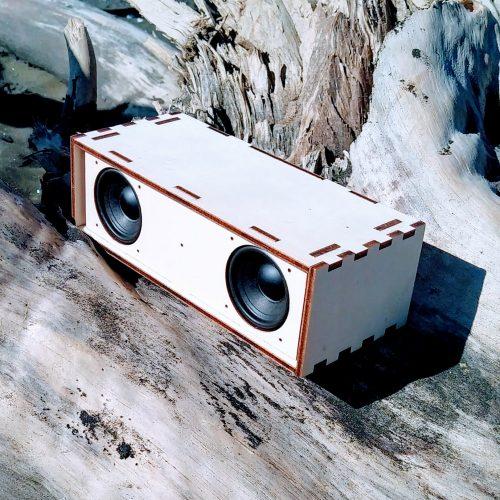 Wooden bluetooth speaker on driftwood at Muriwai beach.  DIY Bluetooth Speaker kit.
