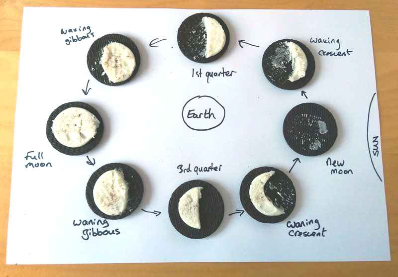 Learn about the moon using cookies - great STEM project!